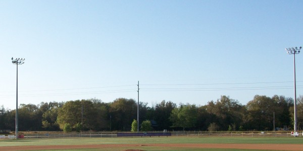 Lake Weir Baseball 2