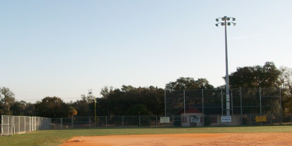 Lake Weir Softball 1